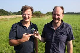 Vogelexperten unter sich: Der Karlsruher Zoo-Direktor Matthias Rheinschmidt (links) und Martin Boschert vom Büro Bioplan Bühl zeigen einen der Sender. Dieser übermittelt aufschlussreiche Daten über den Großen Brachvogel.