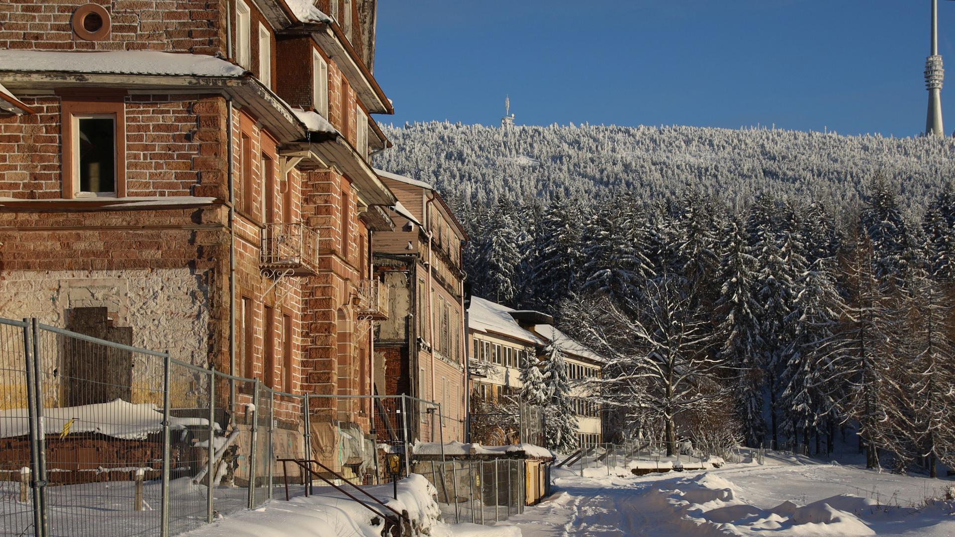 Gelände der geplanten Anima Tierwelt in Sasbachwalden im Schnee, Stand Januar 2021