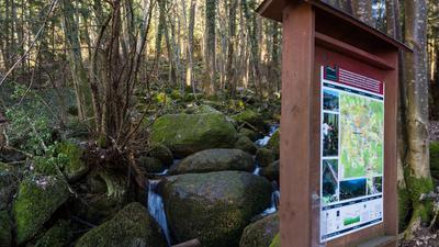 Einstieg in die Runde: Mit den Gaishöll-Wasserfällen beginnt der Genießerpfad, später geht es auch noch über Wiesen, durch Kastanienwälder und Weinberge.