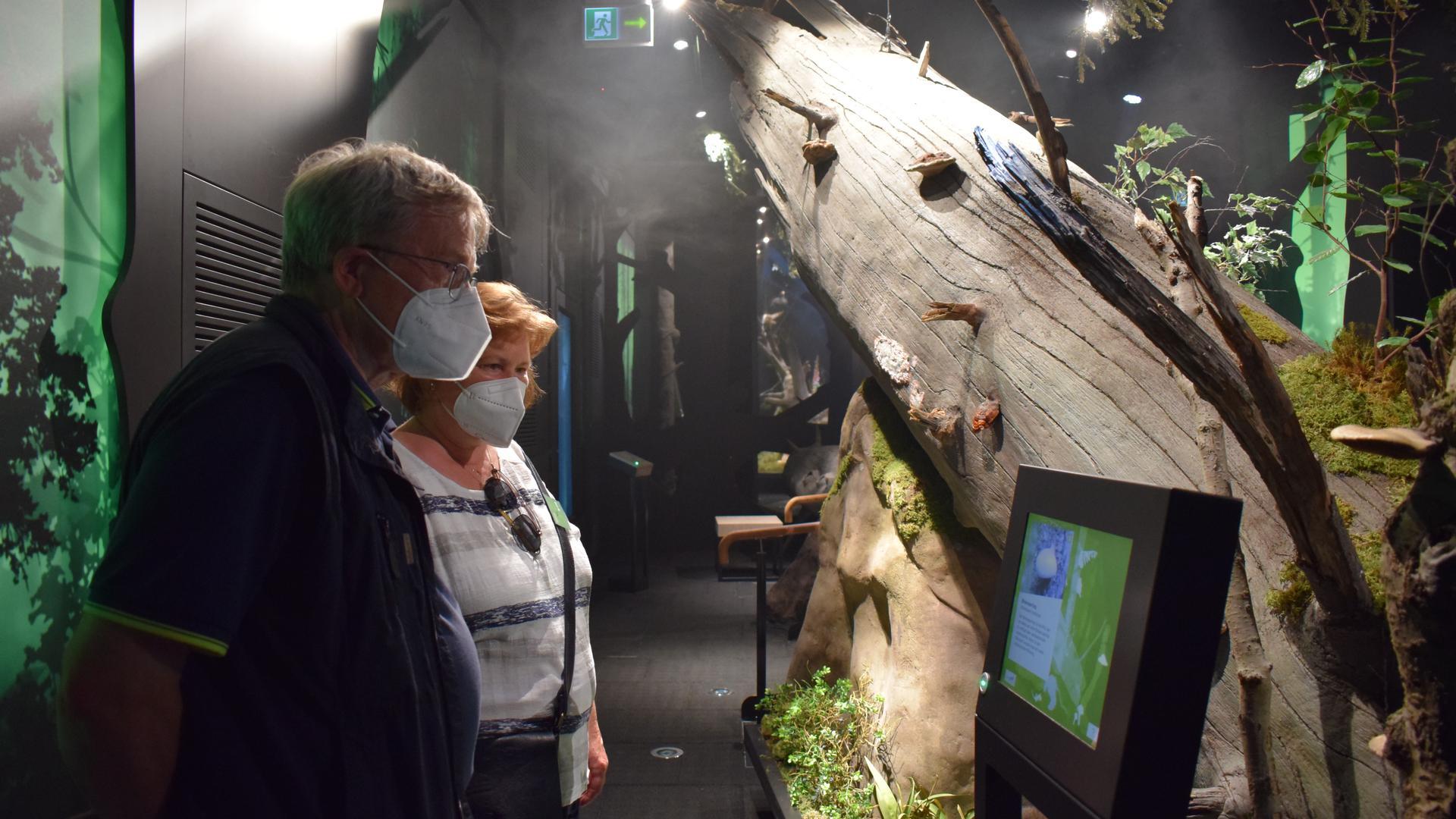 Besucher stehen in einer Ausstellung und informieren sich.