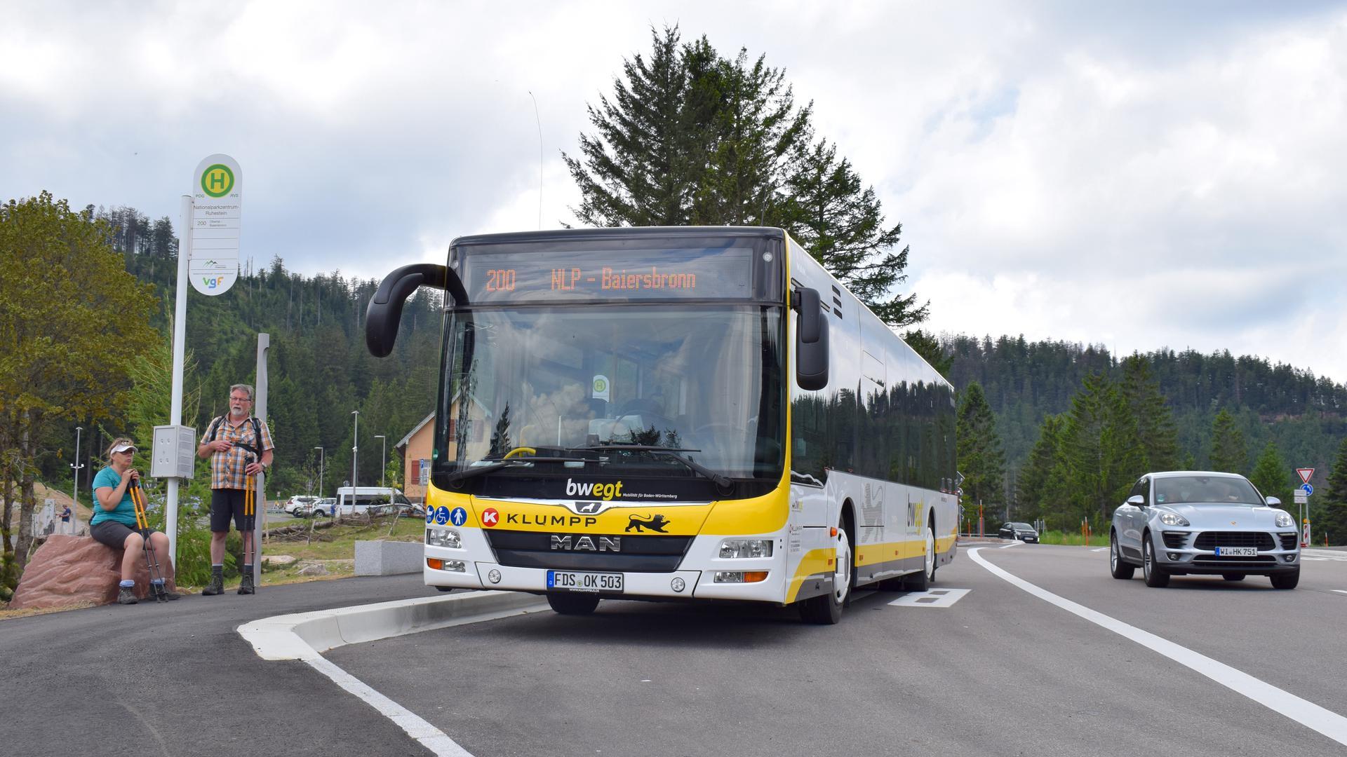 Die gelb-weißen Nationalpark-Buslinien fahren aus vier Richtungen zum Ruhestein.