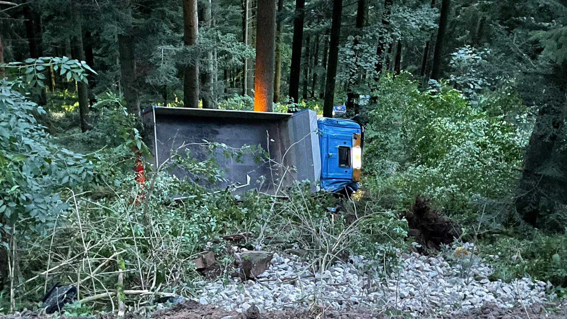 Lkw Wald Sturz