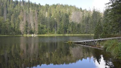 Wilder See im Schwarzwald