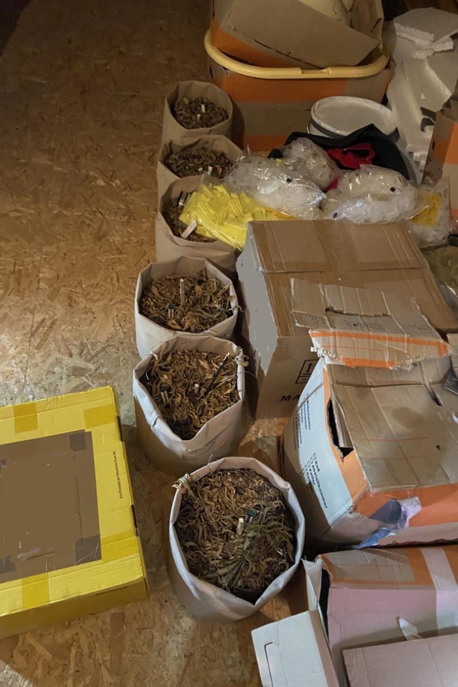 250 Gramm Marihuana entdeckten die Zollbeamten zufällig, als sie in einer Wohnung in Willstätt nach Beweisen für Schwarzarbeit suchten.