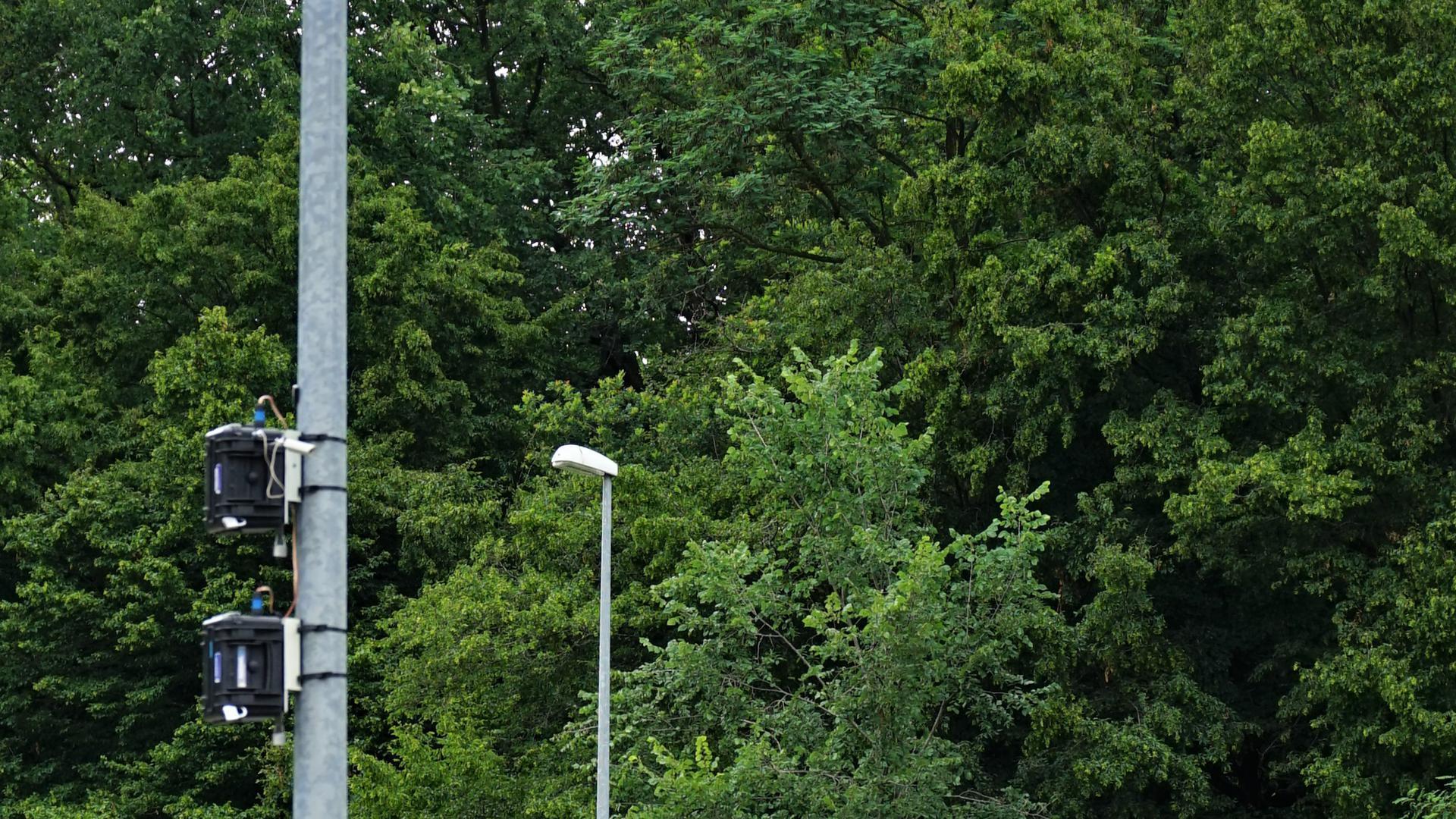 Eine Radfahrerin überquert eine Kreuzung.