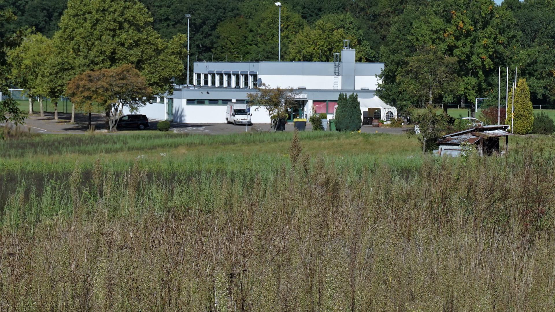 Eine Wiese mit einer Sporthalle im Hintergrund.