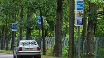 Wahlplakate der AfD