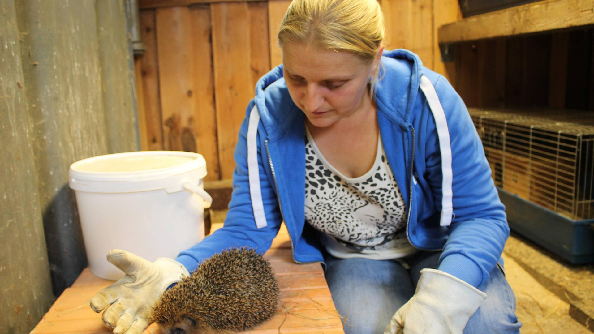 Anja Starck mit ihren größeren und kleinen Schützlingen