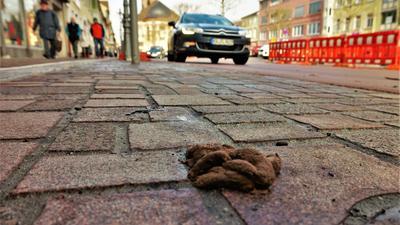 Achtung, Tretmine! Hundehaufen in der neu gestalteten Oberen Kaiserstraße sorgen bei den Rastattern für Unmut.