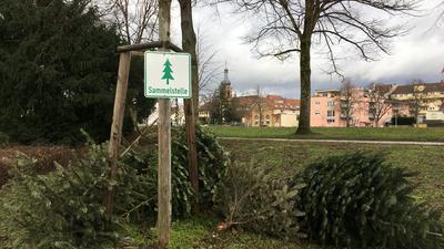 Die Sammelstellen für Weihnachtsbäume sind mit einem Schild gekennzeichnet.