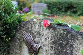 Die Rose auf dem Grabstein ist noch da, das Gesteck ist weg: Doch egal, ob einzelne Blume oder teure Büste - viel schwerer als der materielle Verlust wiegen für die Angehörigen der Eingriff in die persönliche Sphäre und die Respektlosigkeit.