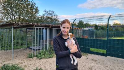 Hundenachwuchs im Rastatter Tierheim: Saskia Joeres, die zusammen mit Silke Vierboom die Einrichtung leitet, kümmert sich um Hundewelpen. Davon gab es 2020 mehr als gewöhnlich.
