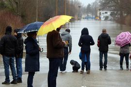 Sightseeing bei strömendem Regen: Im Januar zog es etliche Hochwassertouristen in Richtung des Fähranlegers in Plittersdorf. Die Rheinpromenade und auch Teile der Fährstraße waren überflutet.