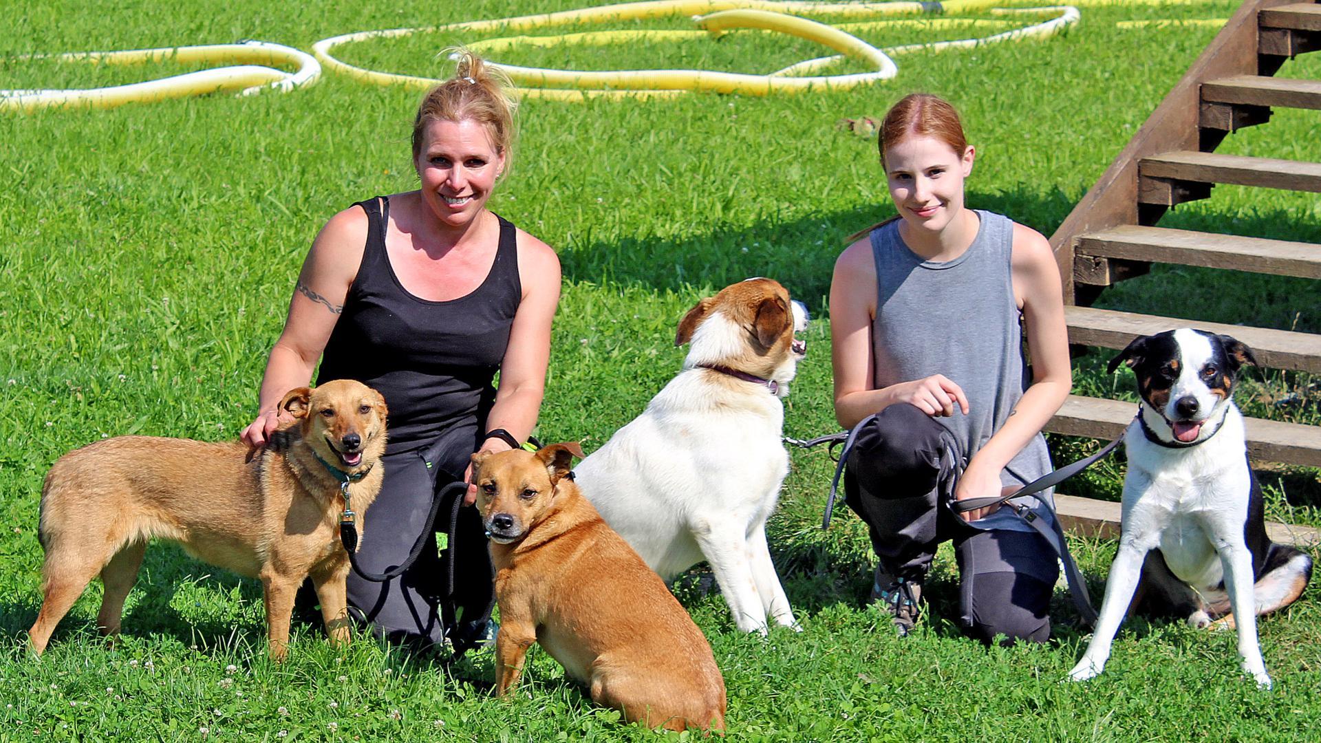 """Das Tierwohl steht an erster Stelle: Die ersten vierbeinigen """"Corona-Rückläufer"""" sind schon im Rastatter Tierheim gelandet. Silke Vierboom und Saskia Joeres (von links), die beiden Leiterinnen der Einrichtung, befürchten, dass es noch mehr werden könnten."""