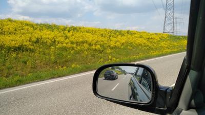 Gelbe Blumenwiese , Straße
