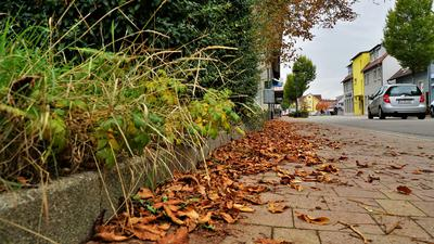 Blätter auf Gehweg