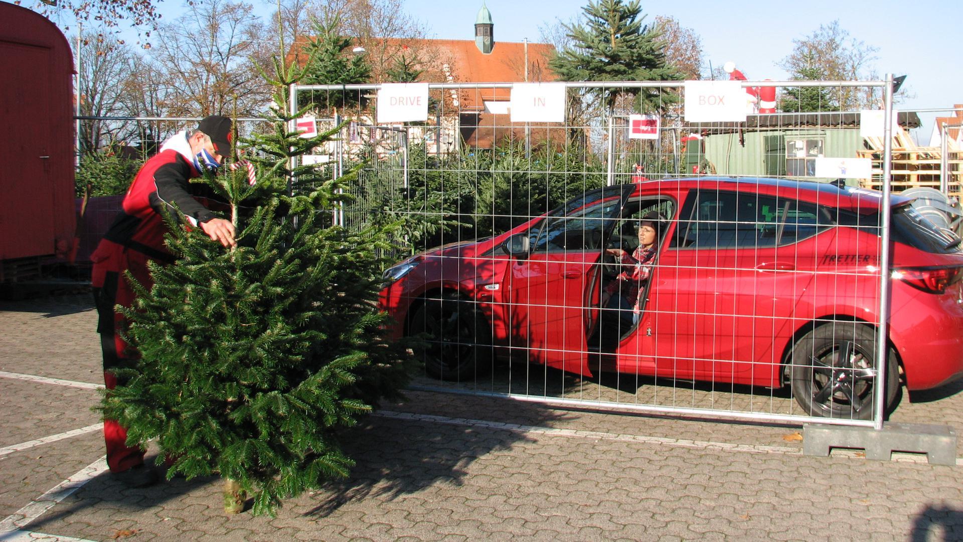 Oliver Frey zeigt einer Kundin aus der Pfalz zwei Bäume