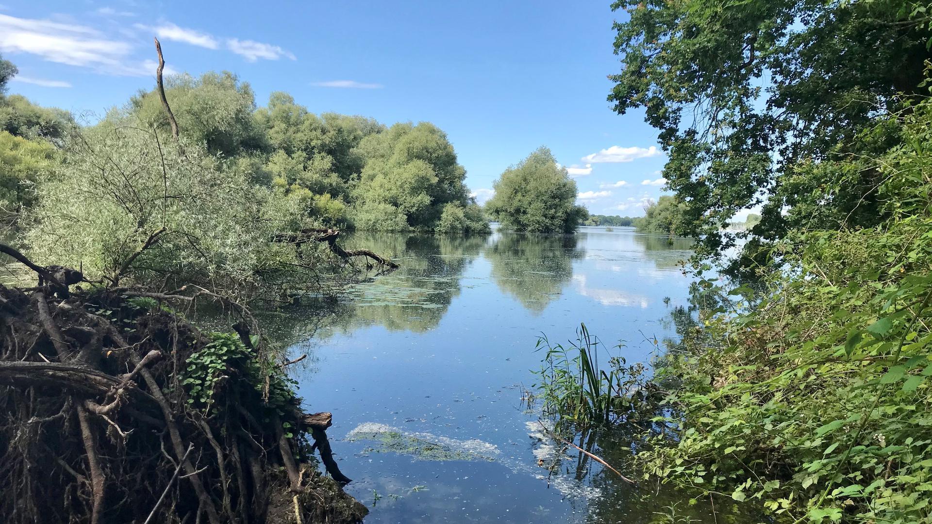 Ein See.