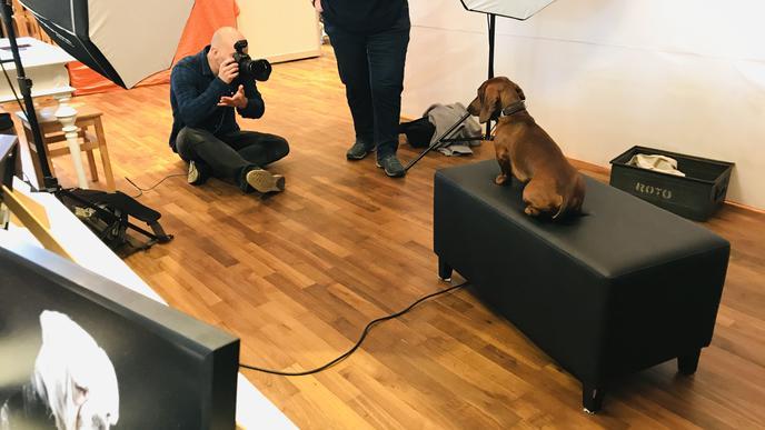 Bitte recht freundlich: Der Hundefotograf bei der Arbeit.