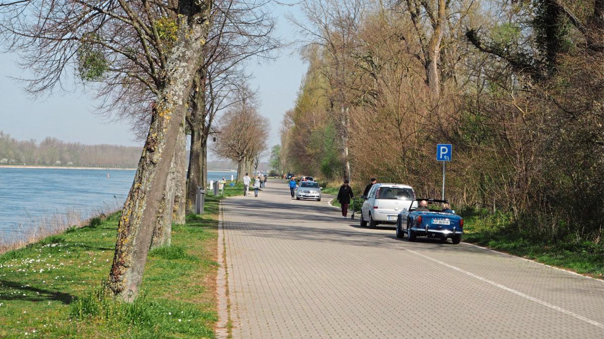 Wenig los wegen des Coronavirus: An einem normalen Samstag im Frühling steht am Rhein bei Plittersdorf Auto an Auto.