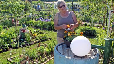 Passionierte Anbauerin von Gemüse: Für Cecilie Koziolek spielt neben der Arbeit an der frischen Luft auch der Aspekt der Selbstversorgung eine Rolle.