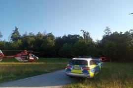 Das Flugzeug ist mitten im Wald abgestürzt.
