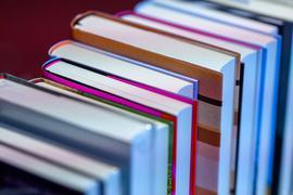 Ausgebremst: Die Bücherschau wird aufgrund der immer noch unsicheren Corona-Lage ohne die gewohnte Buchausstellung im Regierungspräsidium Karlsruhe geplant.
