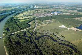 Rheinaue bei Dettenheim