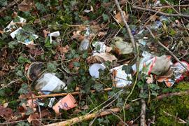Illegal entsorgter Müll liegt am Rand eines Parkplatzes auf dem Waldboden.