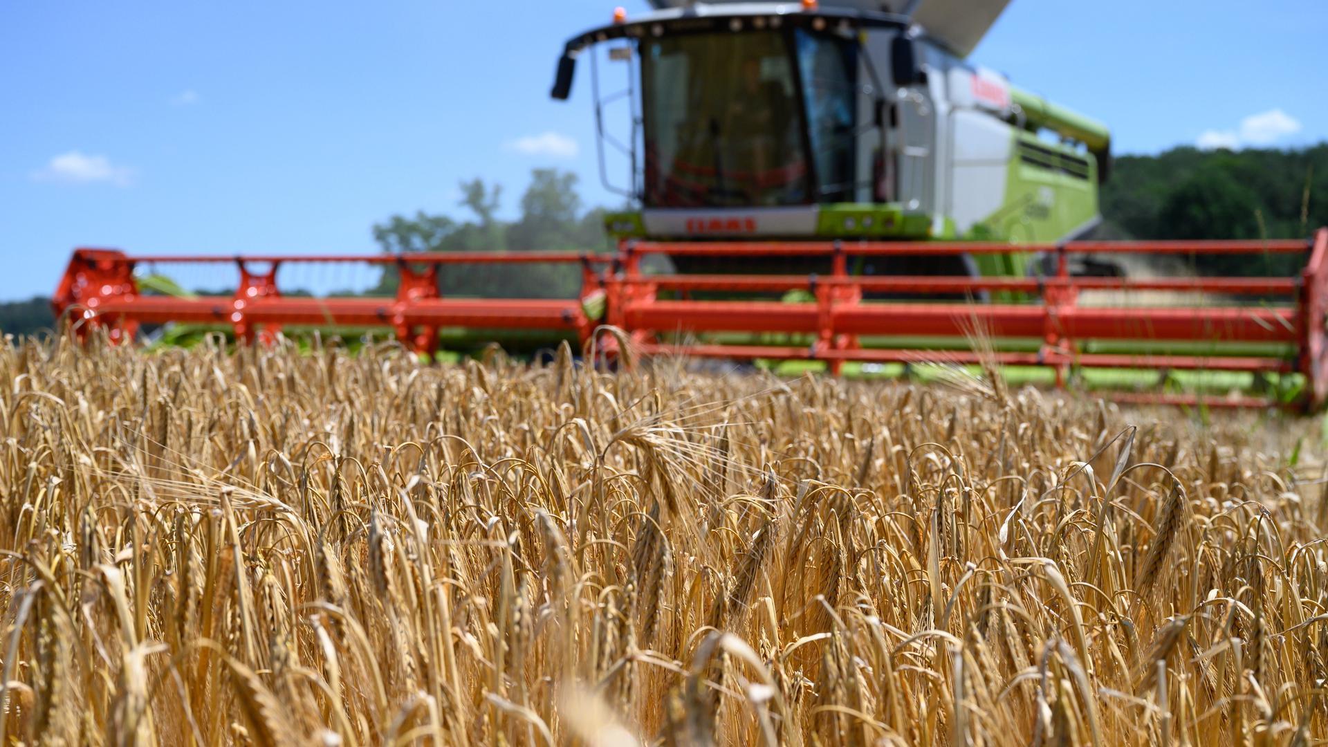 Zukunftsweisend: Ein 1,5-Milliarden-Euro-Programm, das am Dienstag im Kabinett beraten wird, soll in der Landwirtschaft wichtige Weichen stellen.