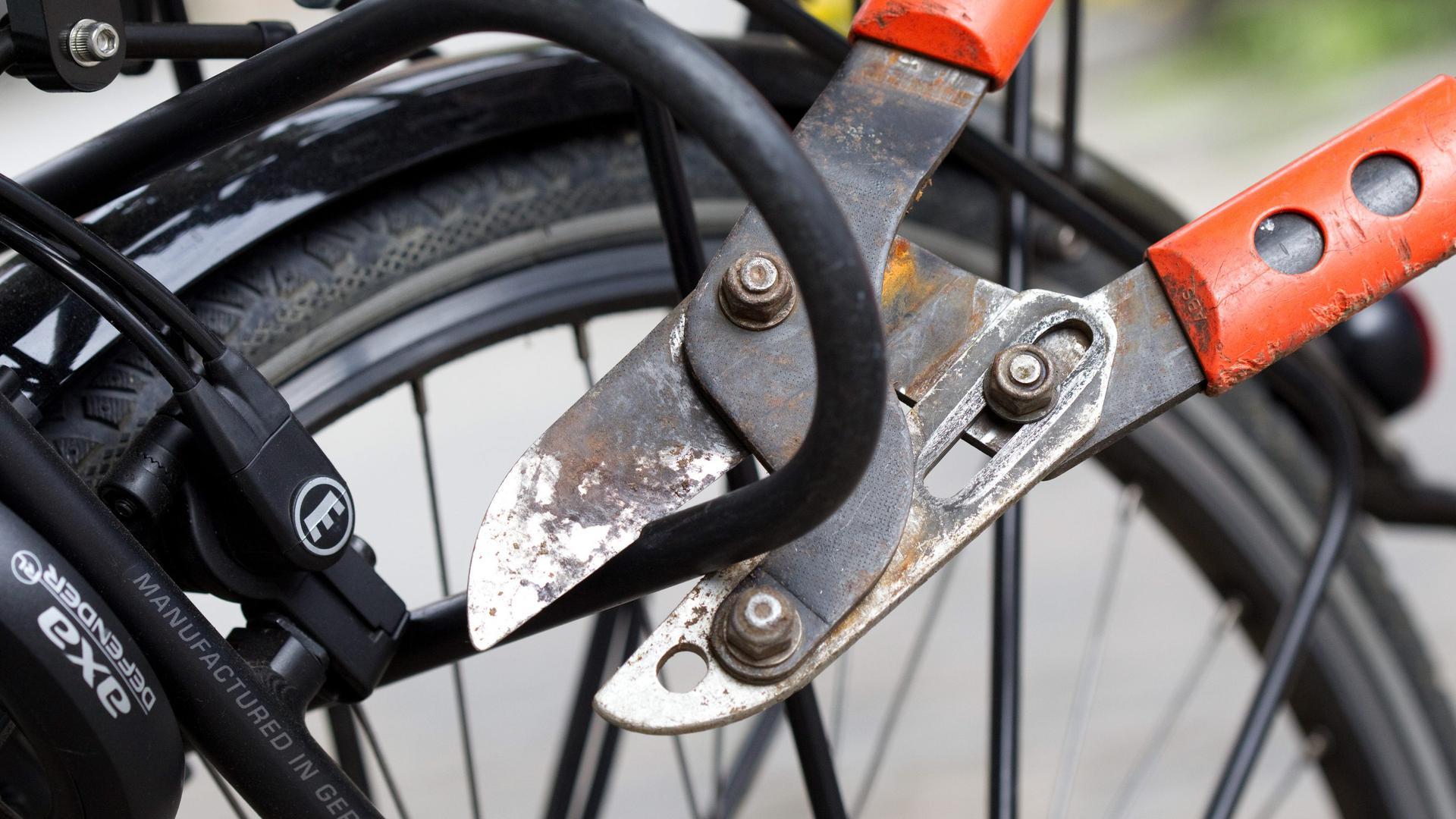 """ARCHIV - ILLUSTRATION - Ein Fahrradschloss wird am 31.08.2011 in Rheine (Nordrhein-Westfalen) mit einem Bolzenschneider geöffnet. (zu dpa «Prozess gegen Bande von Fahrraddieben"""" vom 18.09.2017) Foto: Friso Gentsch/dpa +++(c) dpa - Bildfunk+++"""