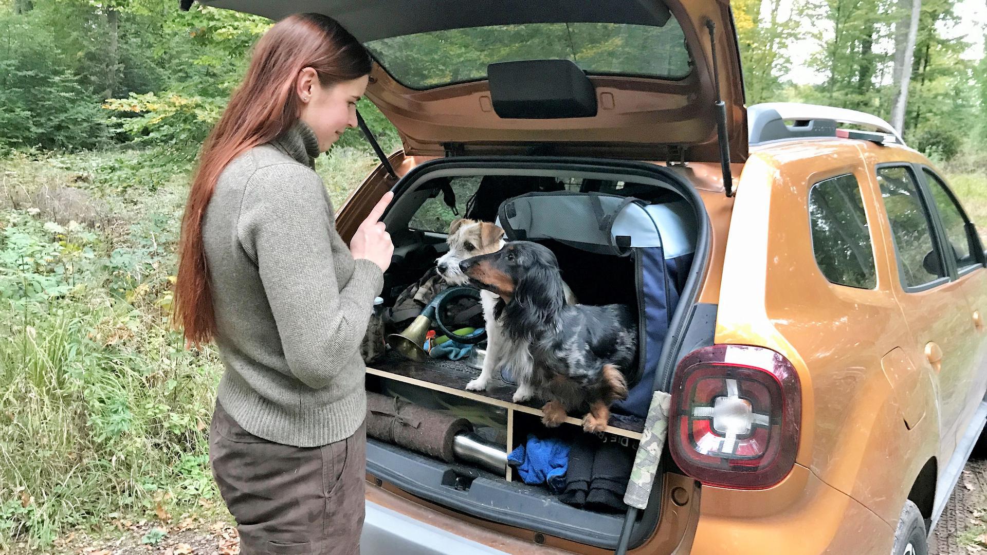 Frau steht vor geöffnetem Kofferraum, darin sitzen zwei Hunde.