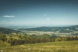 Weiter Blick: Vom Hinterwaldkopf aus sehen die Wanderer bei klarer Sicht bis zu den Vogesen.