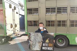 Protest in Birkenfeld: Immer wieder versammeln sich Tierschützer wie Jens Vogt für eine Mahnwache vor dem Firmensitz von Müller Fleisch, um auf ihr Anliegen aufmerksam zu machen. Tiere sollten aus ihrer Sicht nicht geschlachtet werden.