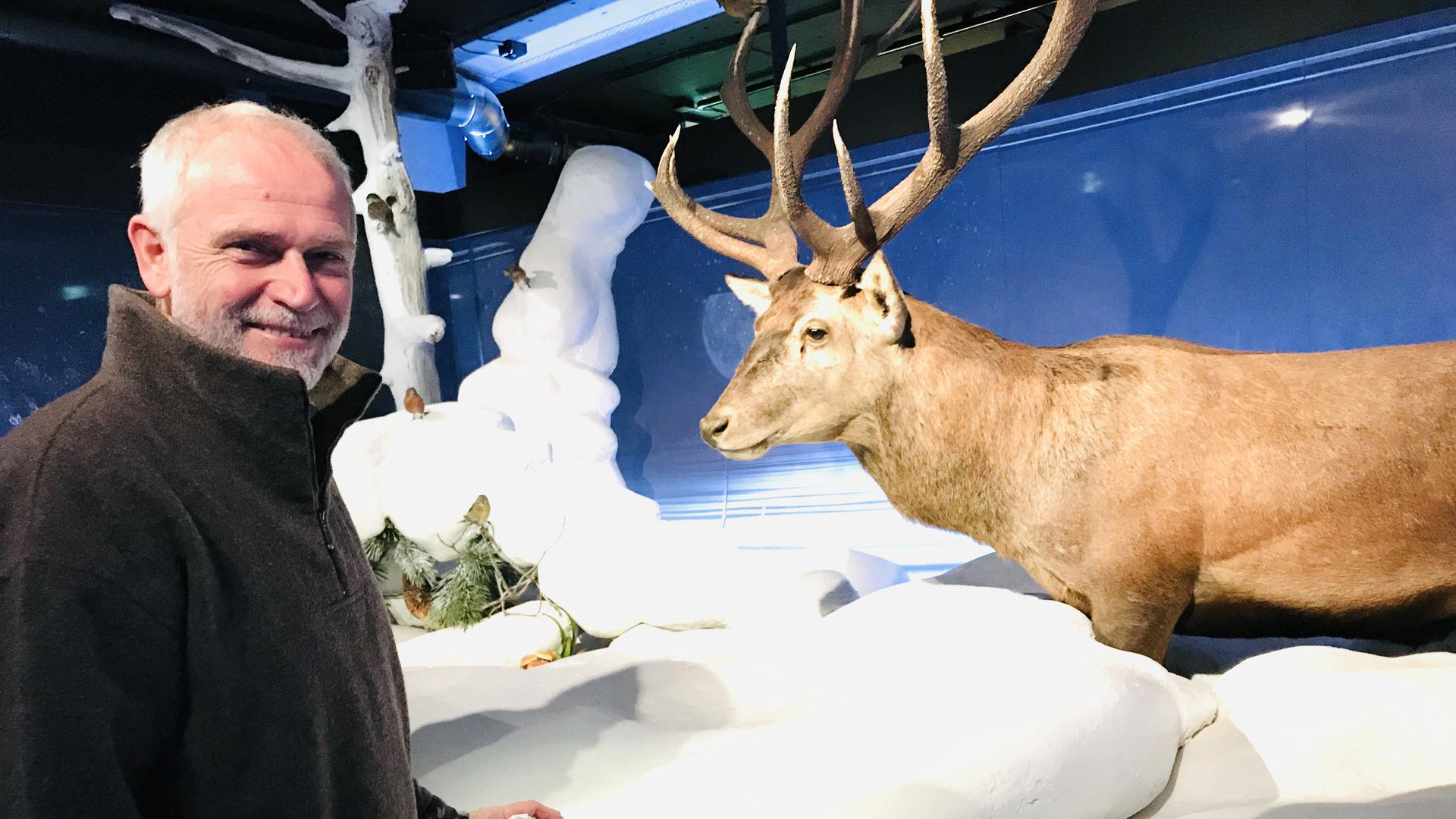 Nationalparkleiter Wolfgang Schlund steht in der Dauerausstellung im neuen Nationalparkzentrum am Ruhestein vor einer Winterlandschaft mit einem präparierten Hirsch.