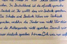 Sieben Zeilen sind in Schreibschrift geschrieben.