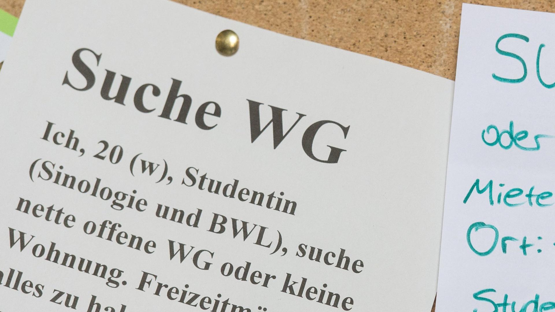 ARCHIV - 23.09.2016, Baden-Württemberg, Freiburg: Studenten suchen an der Universität in Freiburg (Baden-Württemberg) mit Zetteln an einem Schwarzen Brett eine Wohnung. Wohnheim, WG oder alleine: Die Studierenden in Sachsen-Anhalt suchen sich lieber etwas Eigenes, als zu Hause bei den Eltern - im «Hotel Mama» -  zu bleiben (zu dpa «Alleine oder in WG: Studierende entscheiden sich gegen «Hotel Mama»») Foto: Patrick Seeger/dpa +++ dpa-Bildfunk +++ | Verwendung weltweit