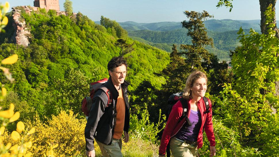 Das Cover des BNN-Wanderführer zeigt zwei Wanderer vor einer Burgruine.