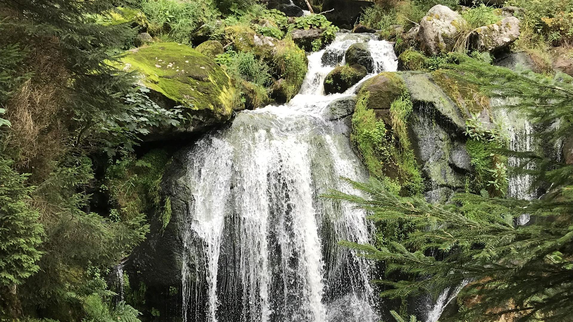 Touristen stehen vor den Triberger Wasserfällen.