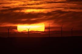 Die Sonne geht über Windrädern auf.