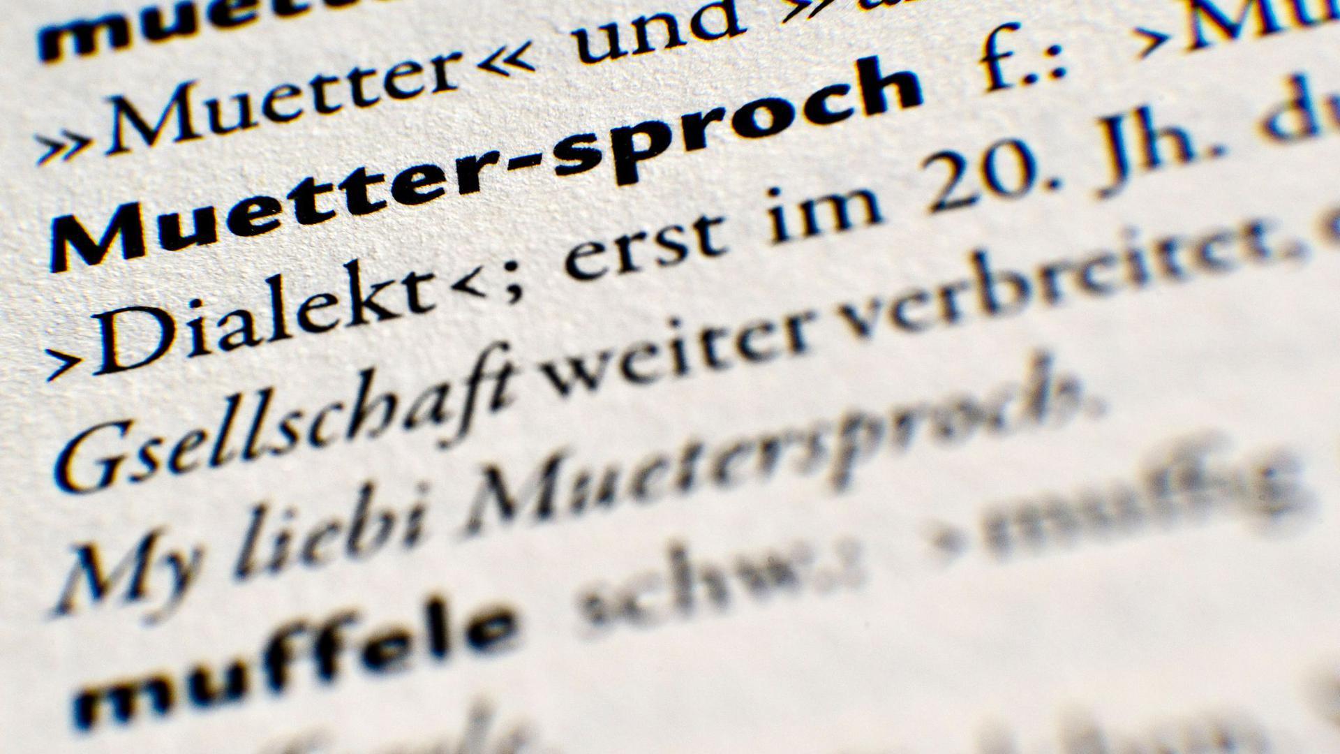 """""""Muettersproch"""" (Muttersprache) ist in einem alemannischen Wörterbuch zu lesen."""