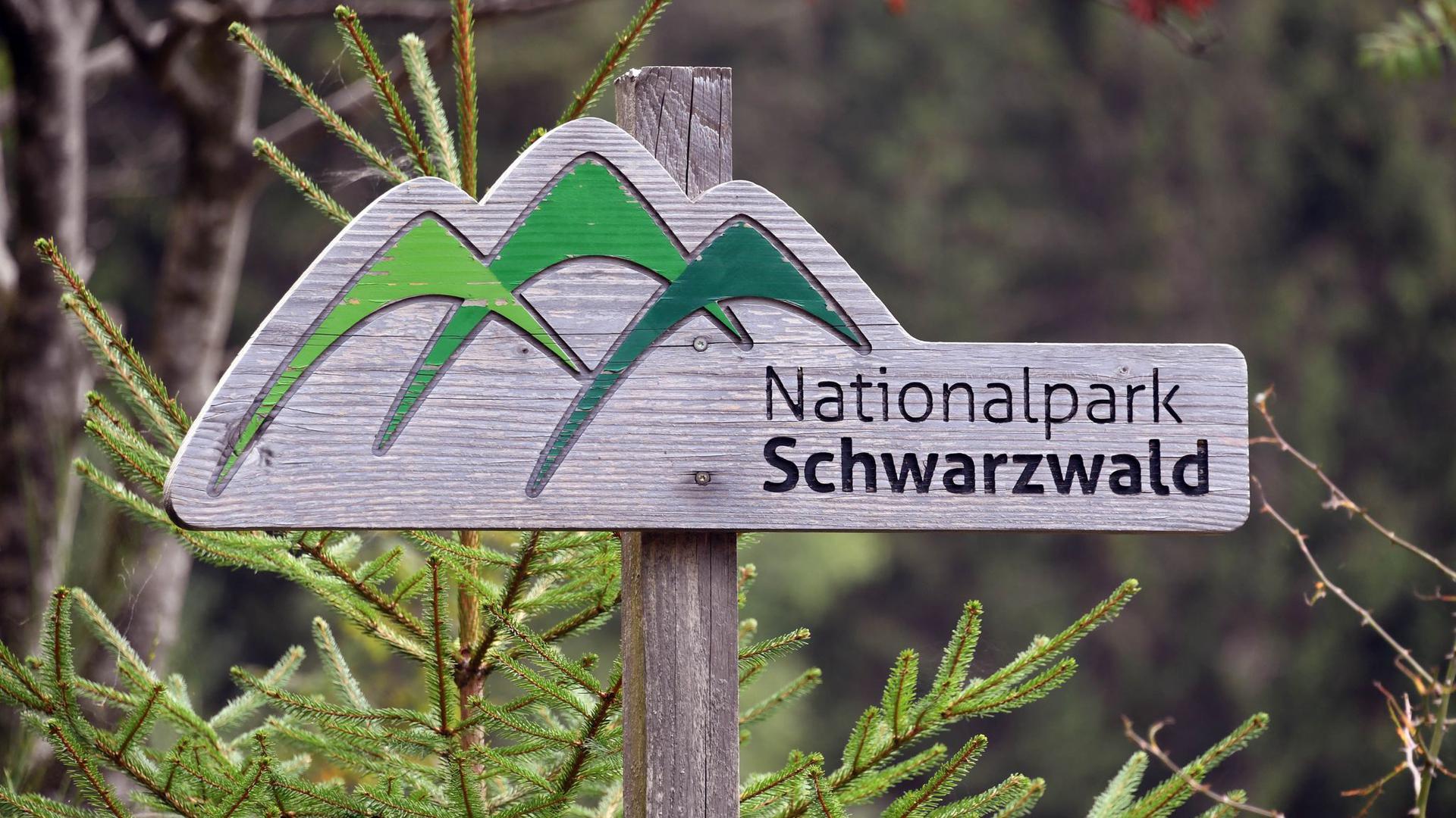 """Ein Holzschild mit der Aufschrift """"Nationalpark Schwarzwald""""."""