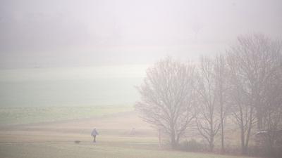 Eine Frau geht mit ihrem Hund im Nebel spazieren.