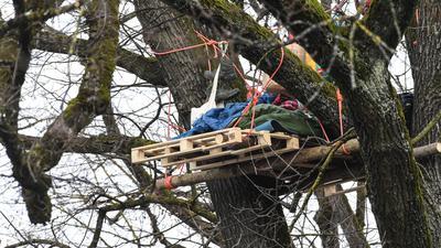 Umweltaktivisten besetzen in der Innenstadt einen alten Baum.