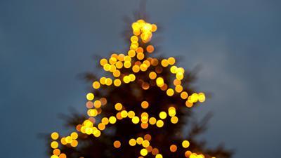 Ein mit einer Lichterkette beleuchteter Tannenbaum.