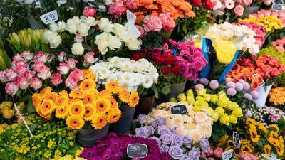 Schnittblumen in einem Blumenladen.