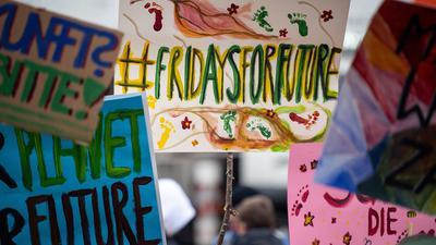 Fridays for Future-Demo