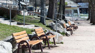 Leere Bänke stehen am Ufer am Titisee im Schwarzwald.