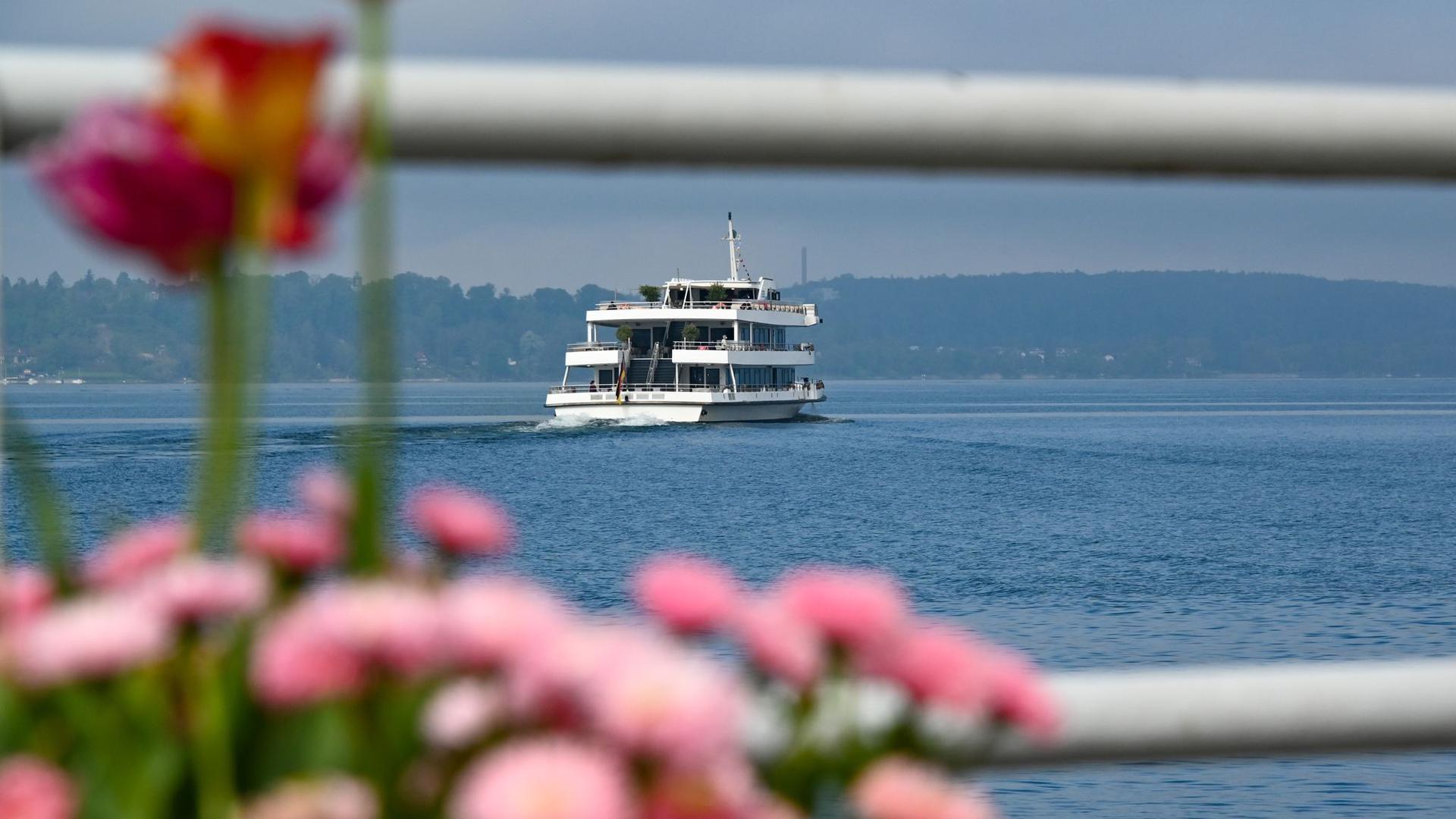 Ein Passagierschiff fährt Richtung Insel Mainau.