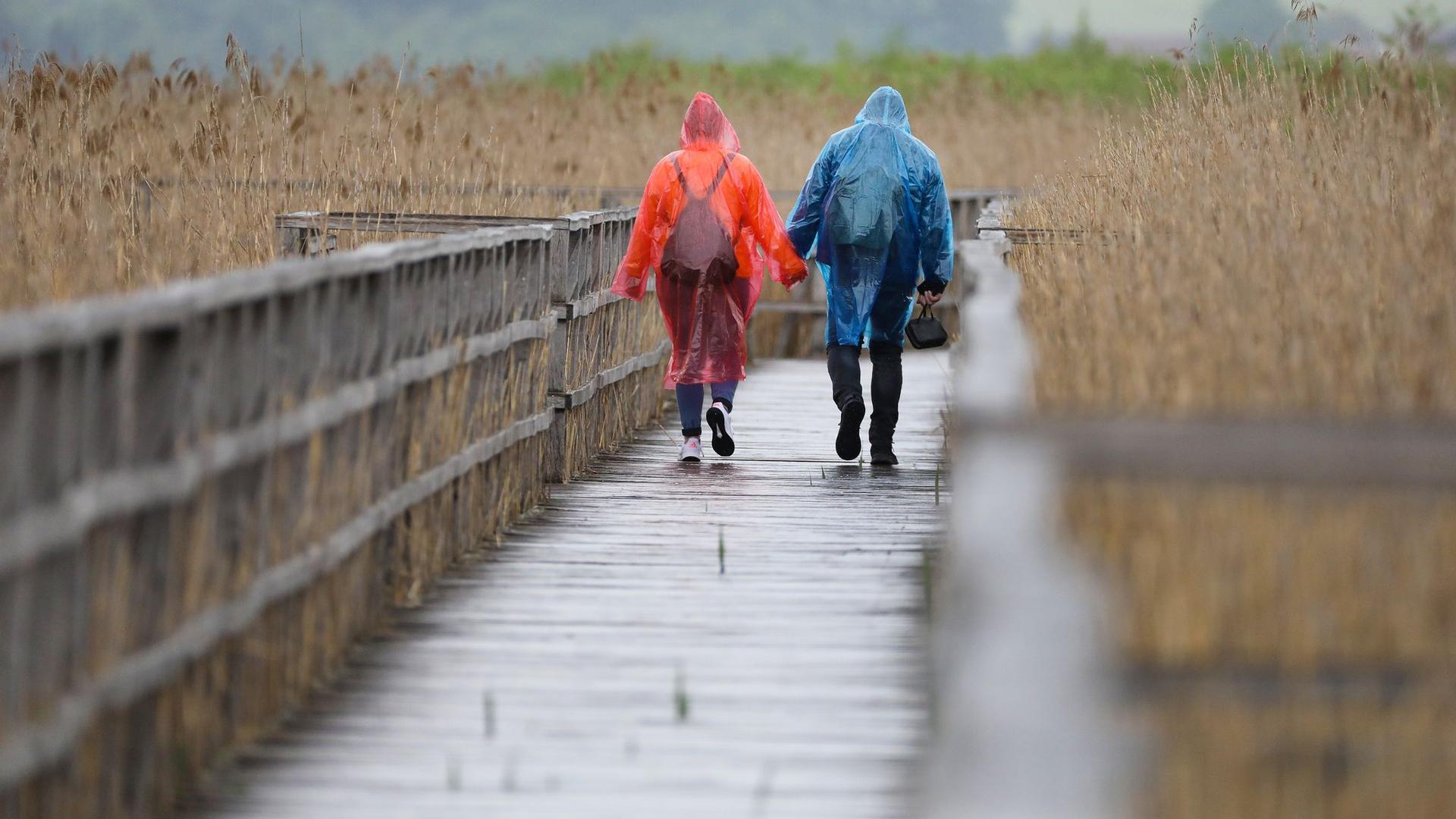 Ein Paar in Regenponchos geht auf dem rund 1,5 Kilometer langen Federseesteg auf dem Federsee.